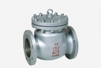 conventional swing check valve