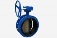 High size double flanged butterfly valves